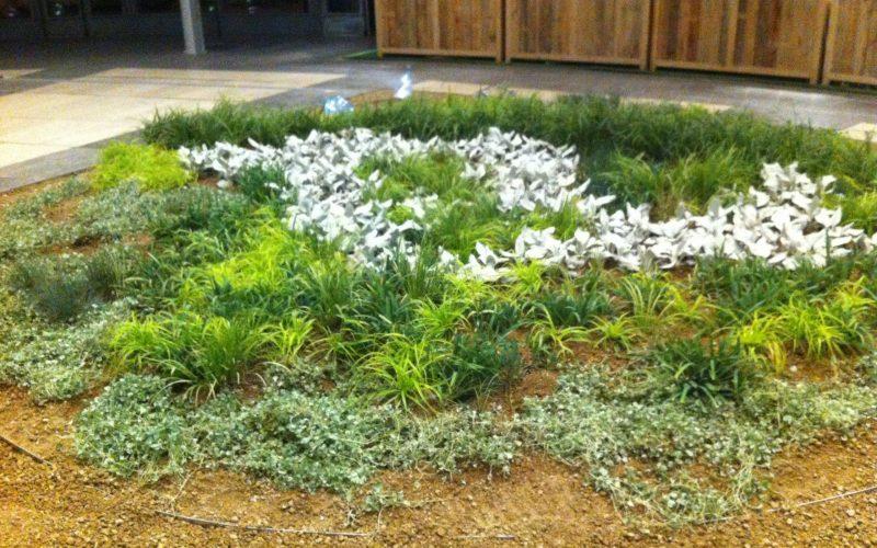 05 piante mie orticolario